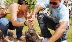 20101216174227-reforestacion-jovenes.jpg