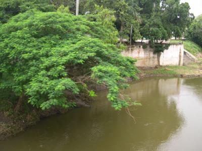 20111029162707-rio-sagua5.jpg
