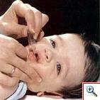 20120420150956-vacuna.jpg