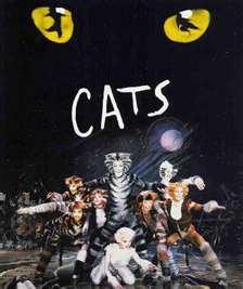 20111103132506-cats.jpg