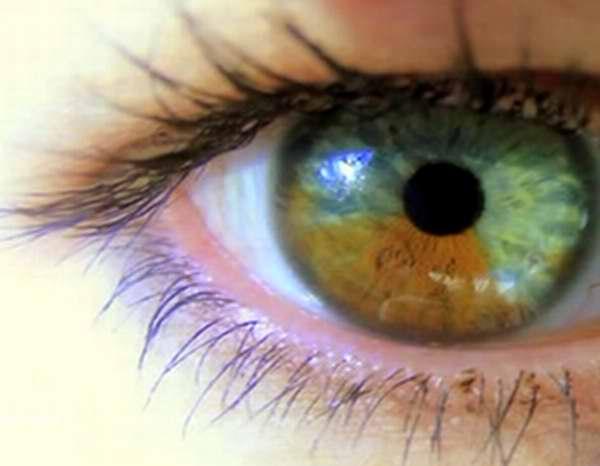Aseguran expertos que los ojos no delatan a quienes mienten