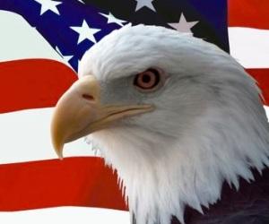 Águila EUA