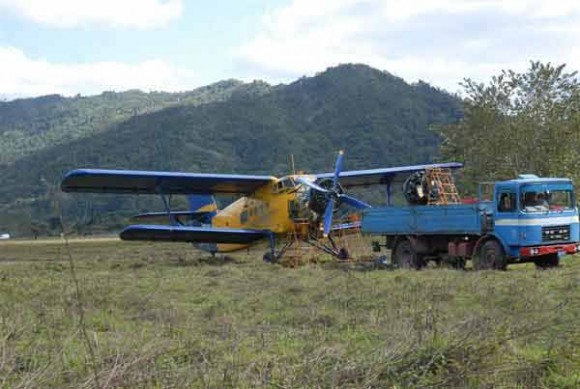 Tres tripulantes de la Empresa Nacional de Servicios Aéreos (ENSA) que viajaban a bordo de la avioneta tipo AN-2CX salieron ilesos tras un aterrizaje forzoso en la zona de Jibacoa, cercana a Topes de Collantes, en la cordillera del Escambray.