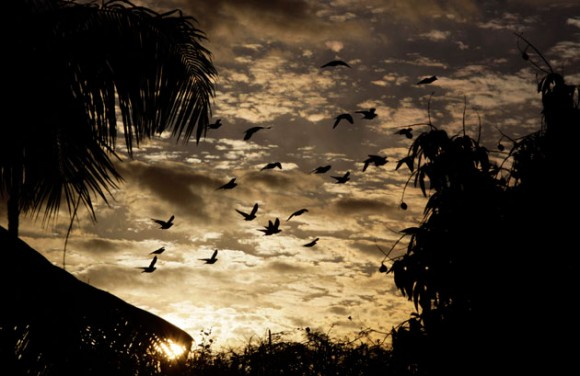 Imagen de la provincia de Villaclara, en Cuba. REUTERS/Desmond Boylan